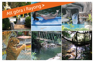 ToDo in Rayong
